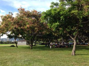ハワイでBBQ@カピオラニ公園。天気は相変わらず最高w