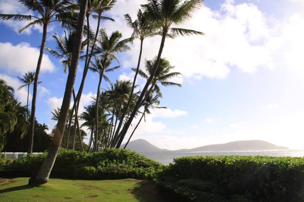 ハワイで大家:次男お遊戯会201401