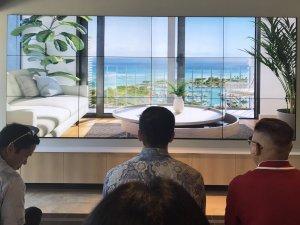 ハワイで大家:アアリイ 'A'ali'i 部屋からの景色
