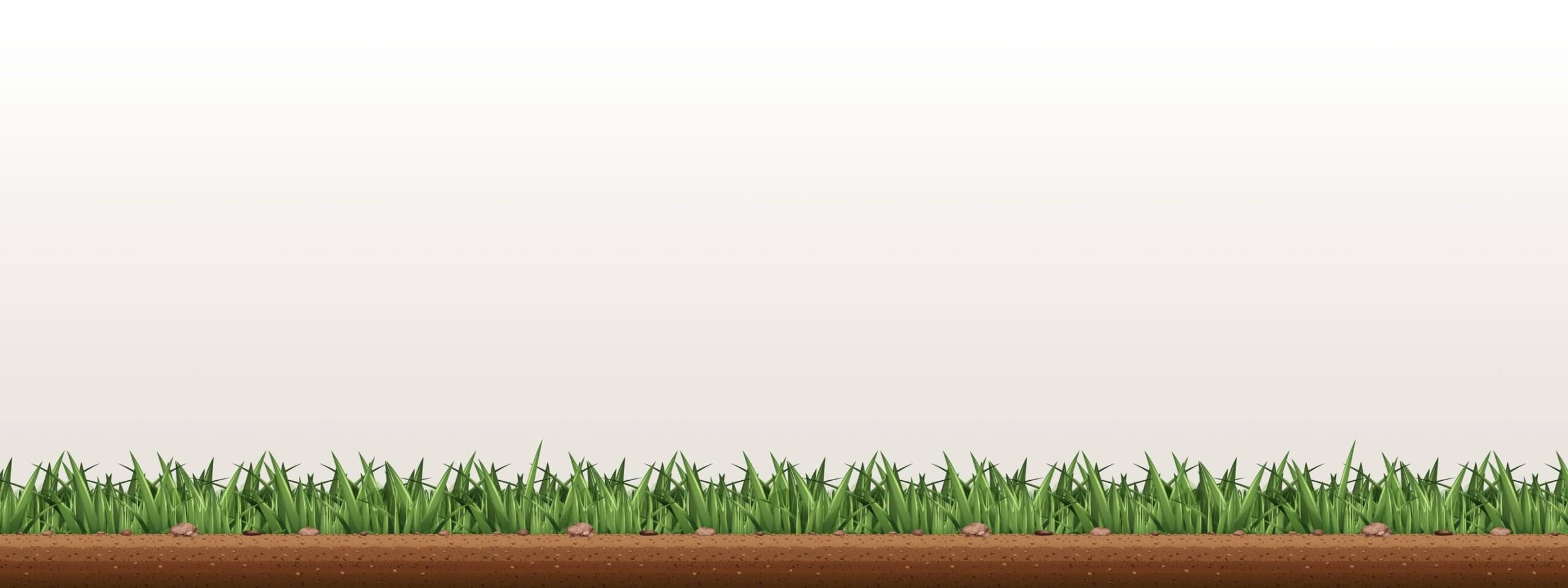 landscaper-grass-background